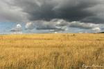 Прогноз  погоды для Украины на 20-22 октября