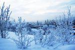 Прогноз погоды в Украине на период с 23 по 25 января