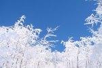Прогноз погоды для Белоруссии в период с 09 по 11 января