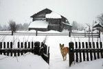 Прогноз погоды для Белоруссии в период с 17 по 19 февраля