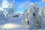 Снігопади й морози в Італії та Фінляндії