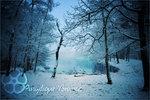 Прогноз погоды в Украине на период с 17 по 19 февраля