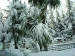 Землетрясение в Казахстане, снегопад в Лондоне