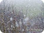 Прогноз Погоды Для Украины 27-29 Марта