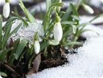 Прогноз Погоды Для Росии С 31 Марта По 2 Апреля