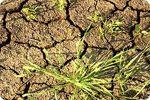 Прогноз погоди для України 6 по 8 червня