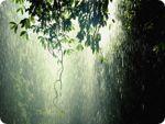 В странах Центральной Европы преобладает ненастная погода
