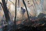 У  штаті Техас від небувалої посухи не припиняються лісові пожежі