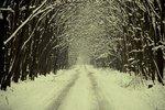 Прогноз погоди в  Україні на період з 17 по 19 лютого