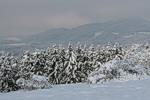 Прогноз погоди в  Україні на період з 24 по 26 лютого