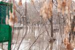 Прогноз Погоди Для Міст Росії 10-12 Травня