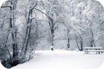 Прогноз Погоди Для Росії З 20 По 22 Лютого